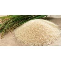 采购大量碎米、玉米、大米、小麦