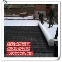 h20夹层排水板hdpe地下室1200g卷材九江种草绿化厂